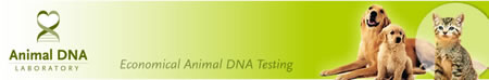 animal-dna-header.jpg